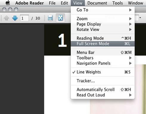 using-pdf-3